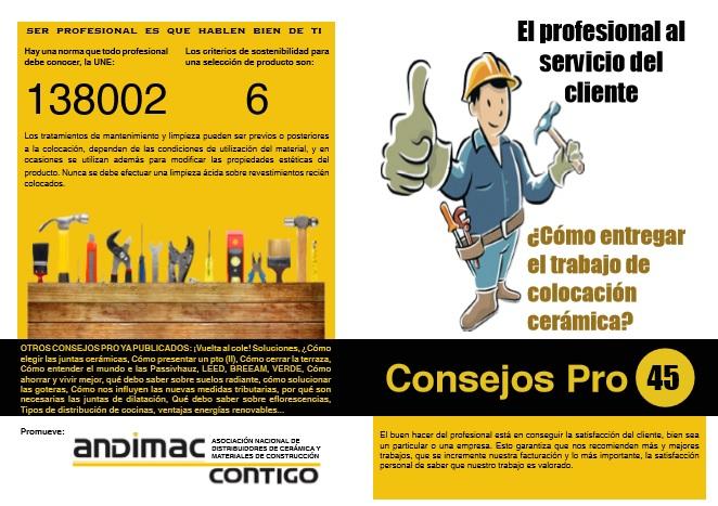 Consejo Pro 45